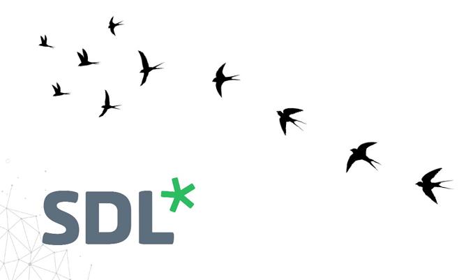 SDL CMS Migration